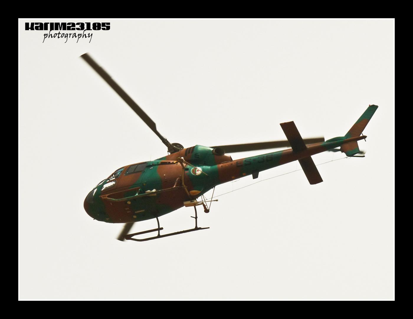 صور مروحيات القوات الجوية الجزائرية Ecureuil/Fennec ] AS-355N2 / AS-555N ] - صفحة 2 26069686776_255b786fe4_o