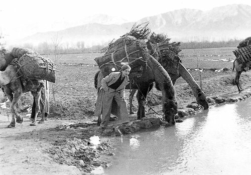 Annemarie Schwarzenbach Afghanistan 1939