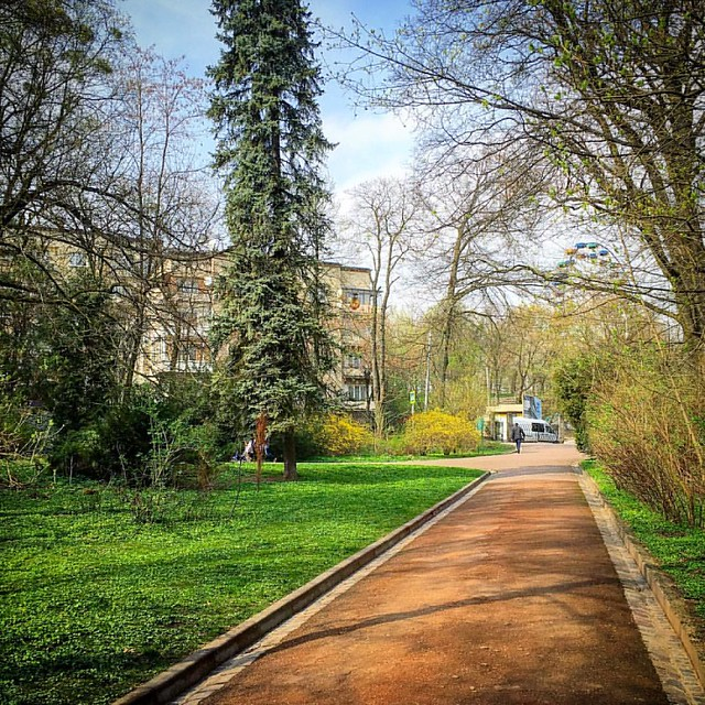 #lviv #ukraine #lvivua #ualviv #lvivgram #lvivingram #lviving #lvivblog #park #spring #spring2016 #nature #стрийськийпарк #львів #львов #україна #украина #sky #lemberg #lvivcity #ilovelviv #nature #cityscape
