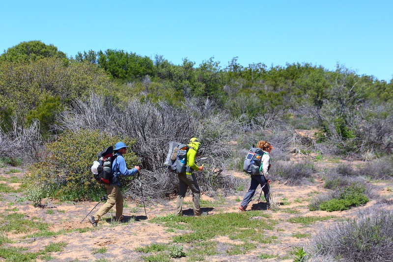 IMG_2792 Pacific Crest Trail