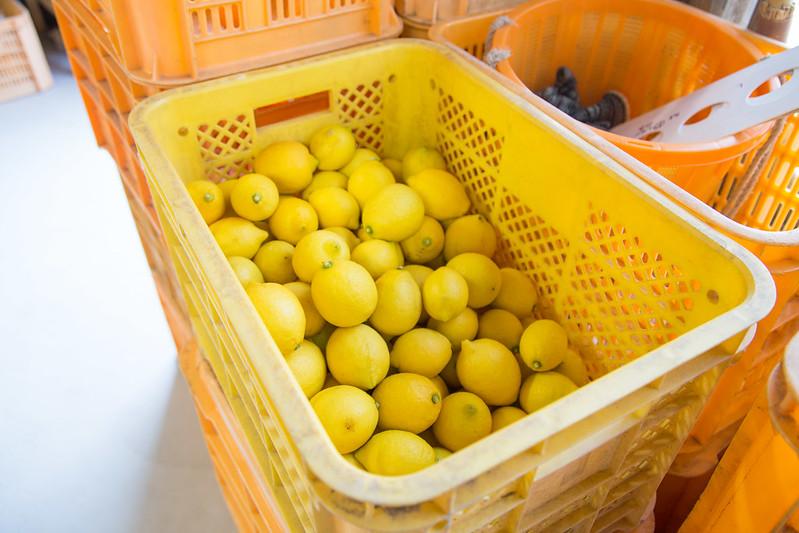 レモンジャム体験-5