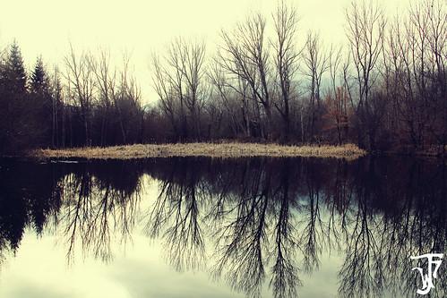 Un reflejo natural