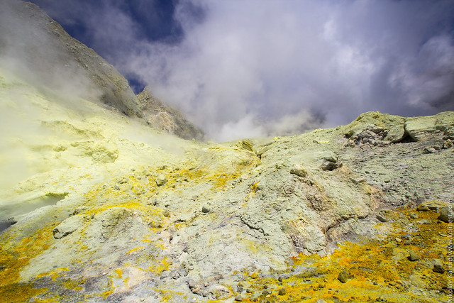 NZ_15-30