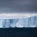 Iceberg in Ilulissat Icefjord by Lil [Kristen Elsby]