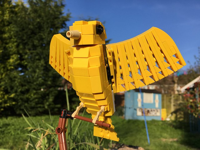 Birds from Bricks photos