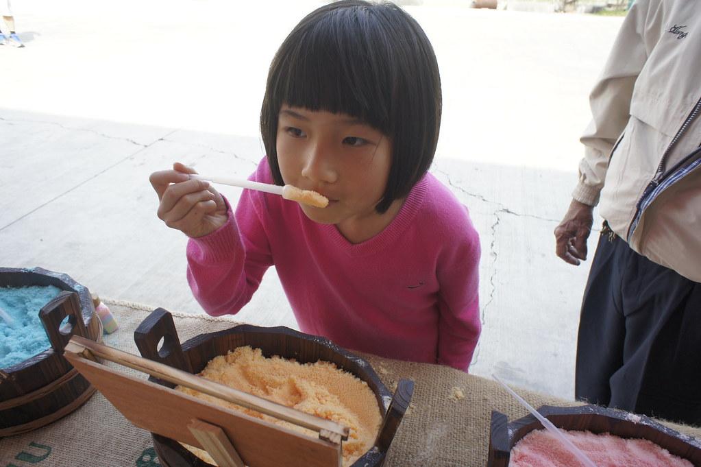 台南市安定區古寶無患子 (42)