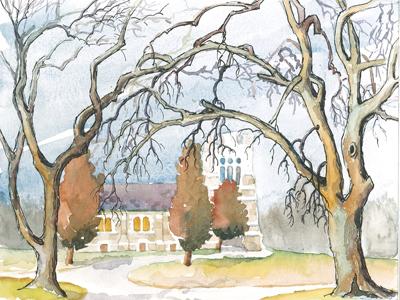 Tangled Winter Trees
