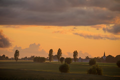Summer evening on the countryside