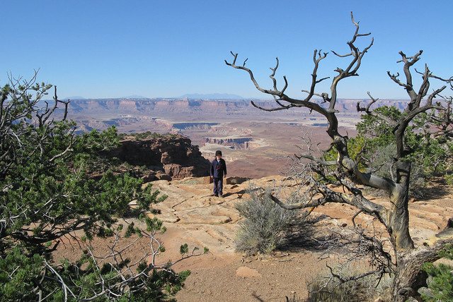 Canyonlands Island in the Sky-3141
