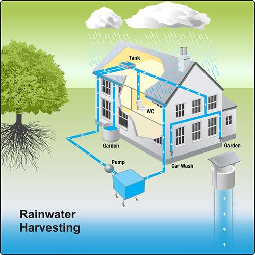 रेन वाटर हार्वेस्टिंग rainwater harvesting  rain water harvesting