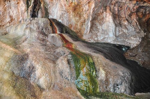 Paleoparque Las Ventas 2015 (48)