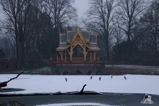Tierpark Hagenbeck 16.01.2016  147