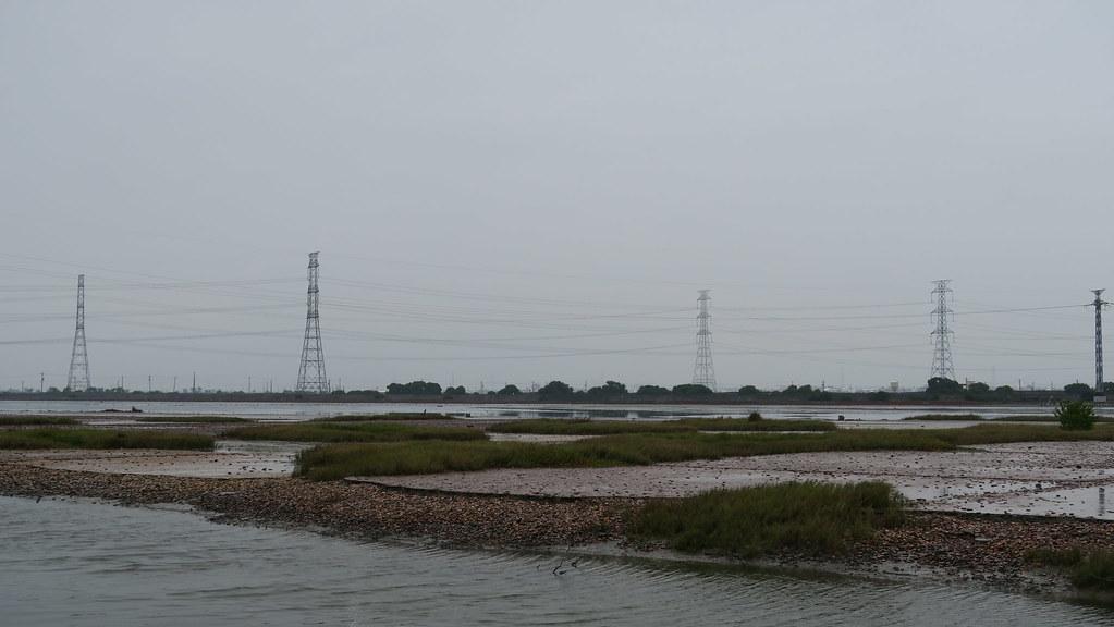 高雄市永安濕地一日遊 (26)