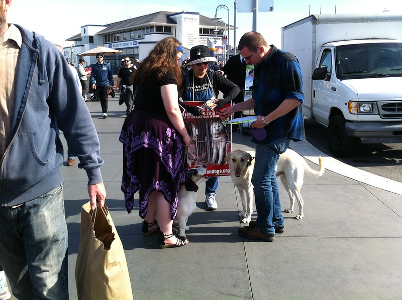 Leafleting and Informational Event on South Korean Dog Meat Trade - February 6, 2016 - San Francisco, Fisherman's Wharf