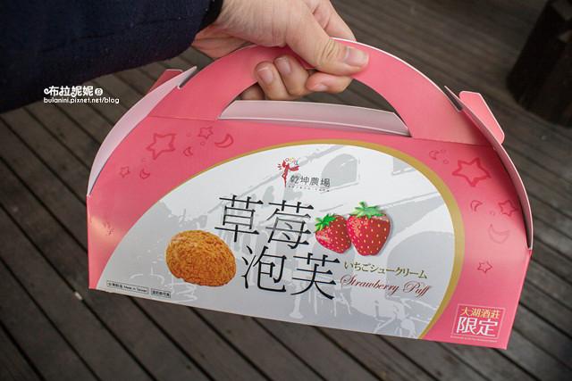 【苗栗大湖採草莓】瘋草莓!苗栗大湖採草莓推薦&草莓小吃