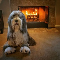 No better way to enjoy a lazy Sunday than in front of the fireplace wearing your comfy slippers.