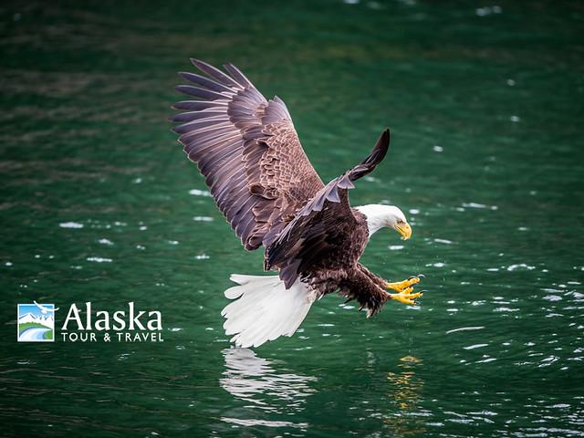 2015 Alaska Photo Contest