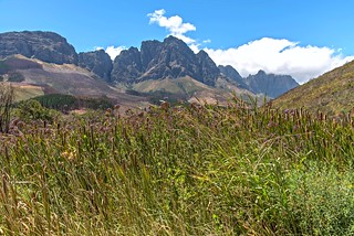 Asseiiblombosch Nature Reserve, Jonkershoek Mountains