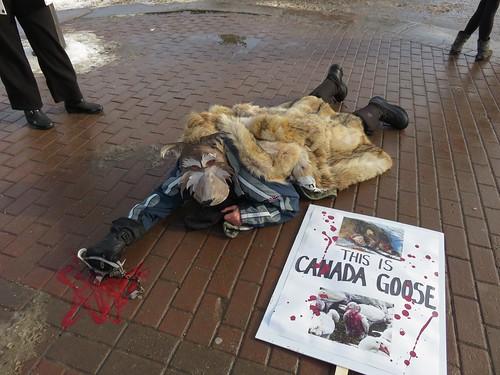 Canada Goose Protest