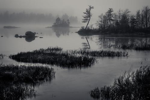 trees canada reflection fall ice water fog island evening rocks novascotia shore lak 2015 cans2s gaspereaulake fujixe2