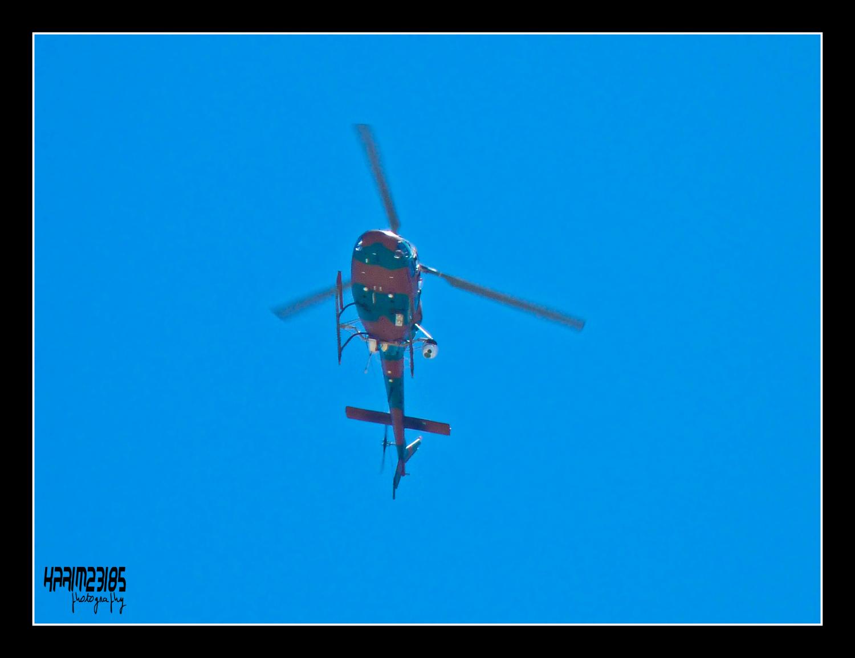 صور مروحيات القوات الجوية الجزائرية Ecureuil/Fennec ] AS-355N2 / AS-555N ] 25893078962_1a749ff59a_o