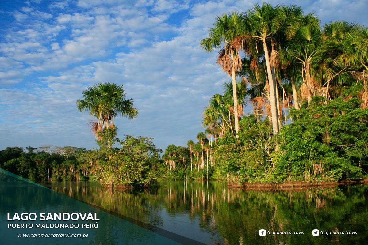 Presenta una exuberante vegetación tropical.