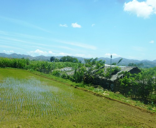 P16-Negros-Bacolod-San Carlos-route (40)