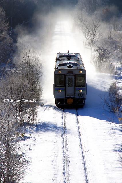 霧氷林沿いの線路を行くキハ150