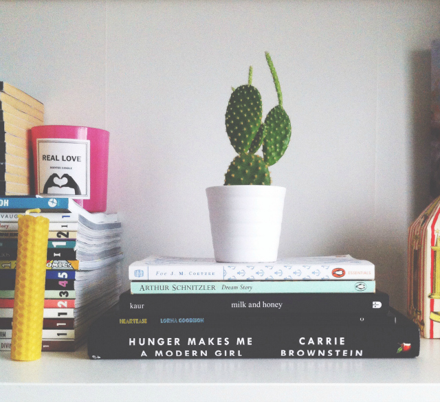 uk book blogs vivatramp book reviews milk and honey rupi kaur penguin essentials carrie brownstein virago