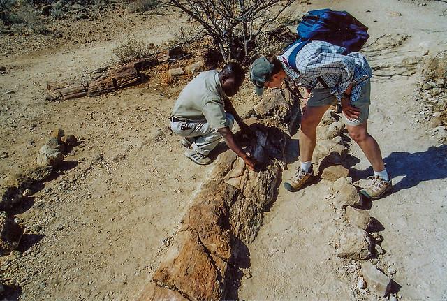 Gisela mit Guide Gabriel im Petrified Forest, Damaraland