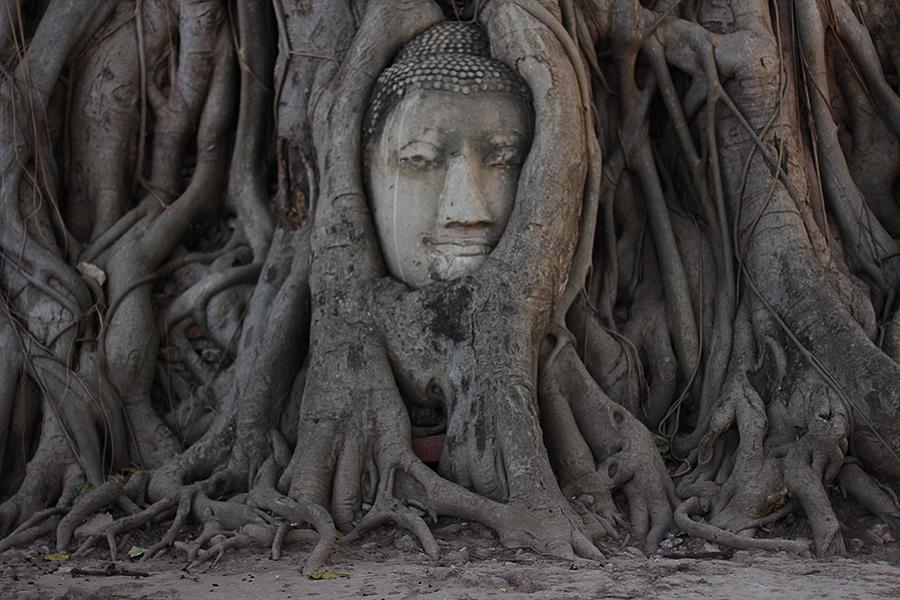 Wat-Maha-That_01