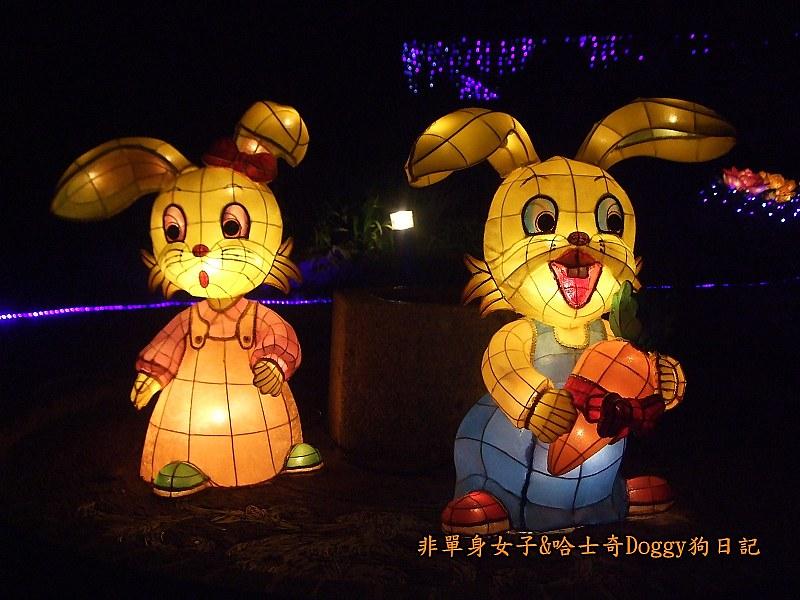 2013台北燈節在花博11