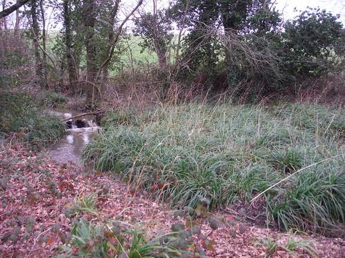 Spittal Brook, near A10 Underpass