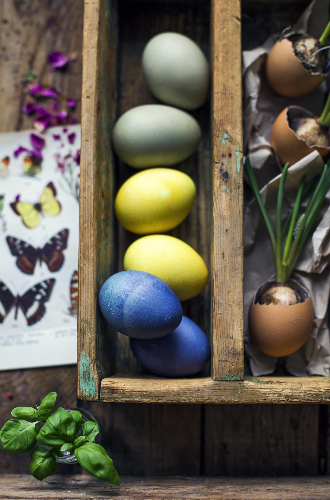 Naturligt färgade Ägg - DIY - Blåbär, Gurkmeja & Kaffe