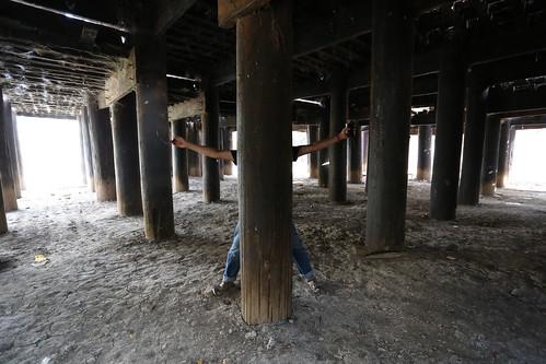 Bagaya Pillars