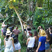 Learning about Tropica Forest medicinal plants the Mayan way