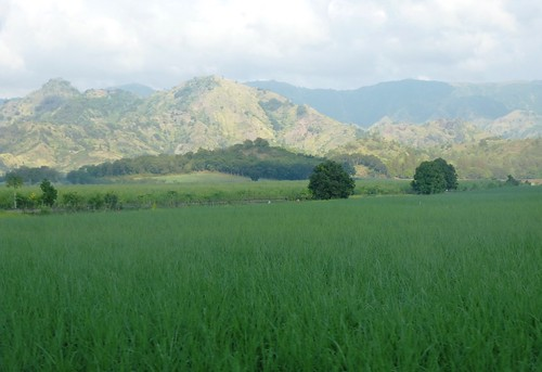 P16-Negros-San Carlos-Dumaguete-Route (7)