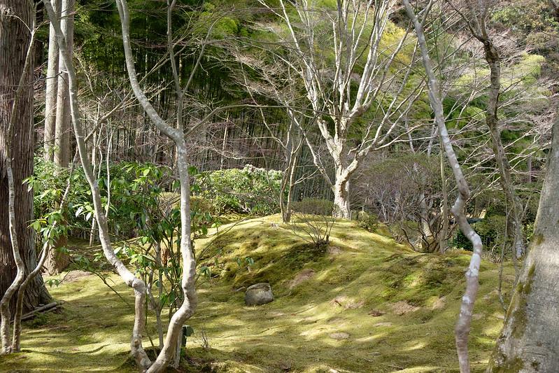 松島 円通院の庭園