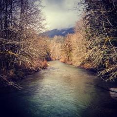 #riverlife #pnw #cellphone #igpro #instagram