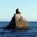 Lands End Cabo_MIN 310_20