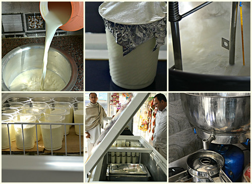 Karnal Surta Dairy: Collage