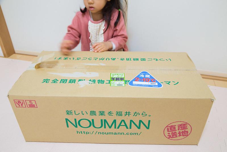 NOUMANN-1