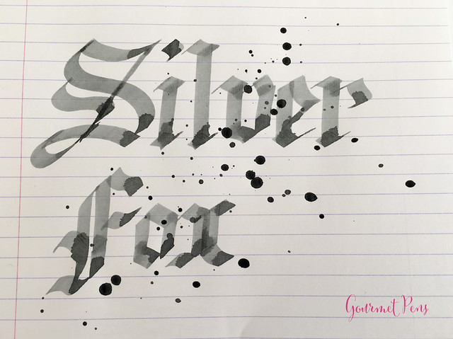 Ink Shot Review Diamine 150th Anniversary Silver Fox @AppelboomLa (5)
