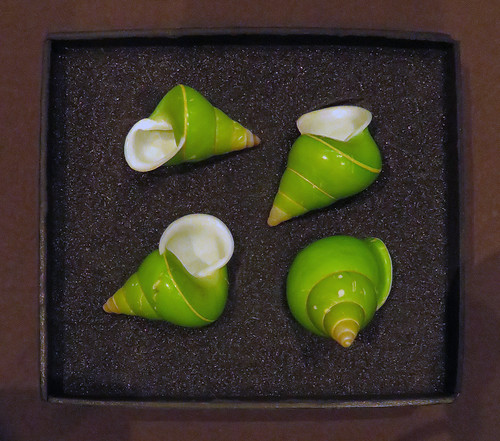 Green shells in a box at the Beaty Biodiversity Museum at UBC, Vancouver