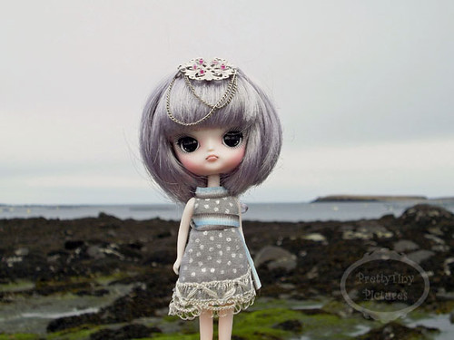 April: Miss Dal Contest 2 Your own Miss Dal from your own collection  26453107545_2b22c16f0a