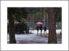 Regen und Schnee