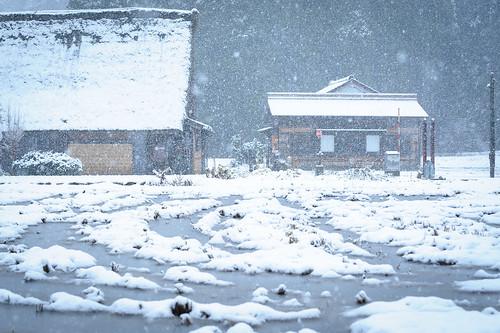 合掌集落冬景色