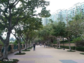 CircleG 遊記 馬灣 珀麗灣 一天散步遊 挪亞方舟 葵芳 中環碼頭 (7)