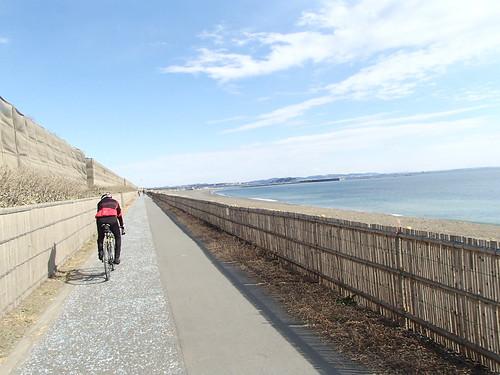 自転車走行海辺 - naniyuutorimannen - 您说什么!