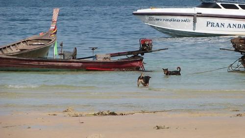 Thailand-0936